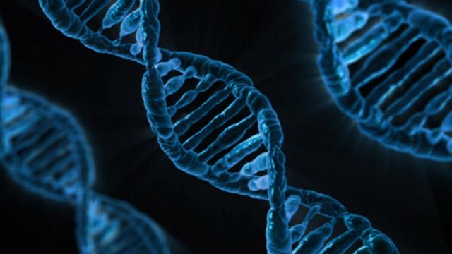 【ギモン】Amazonで買える遺伝子分析キットの中には何が入っているのか?