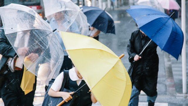 【電車通勤考察】いっそ折りたたみ傘を毎日持ち歩けば良い