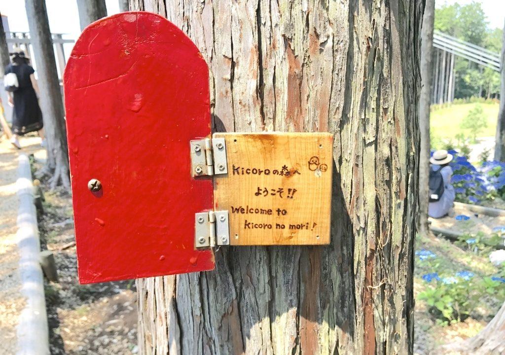 三島スカイウォーク奥の「kicoroの森」が興味深い!森の循環を体験できる場所【三島の旅#2】