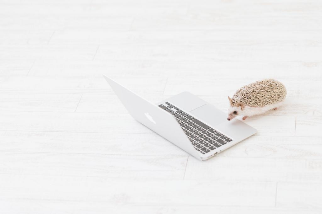 ブログ長期休業&再開のたびに考える「継続」と「優先」の難しさ