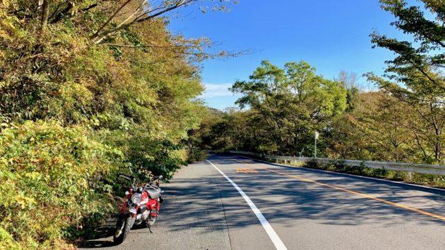 モンキー125とゆく旅 #9 椿ライン(神奈川県道75号湯河原箱根仙石原線)